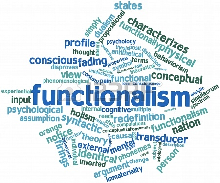 essay on functionalist theory